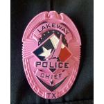 CITY OF LAKEWAY POLICE DEPARTMENT