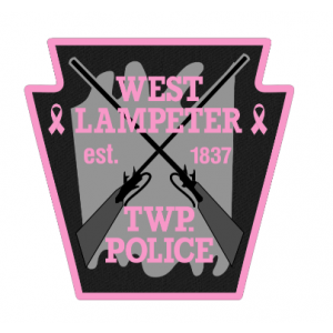 Pink Patch Project.PNG